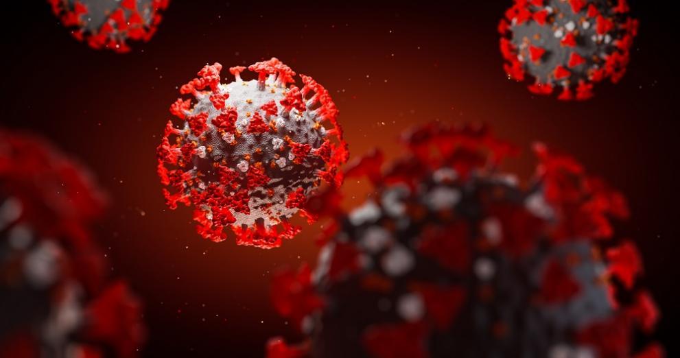 991 ratio koronavirus